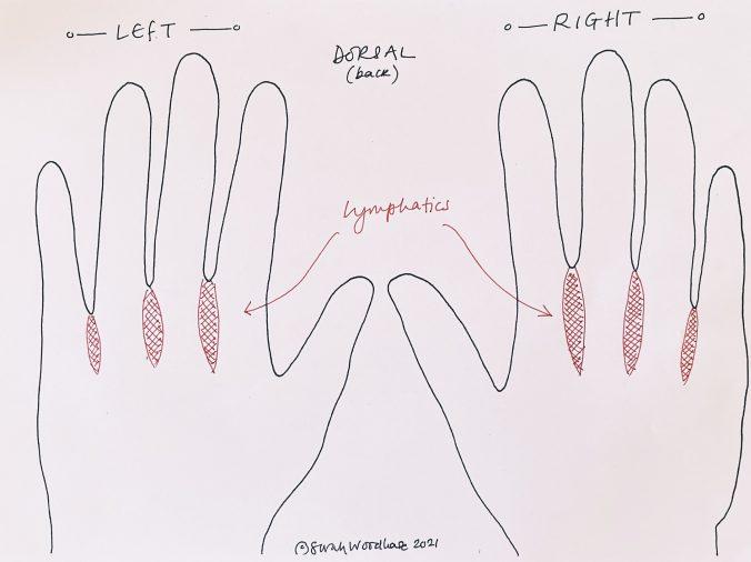 Hand Reflexology chart for seasonal allergies like hay fever (dorsal aspect)